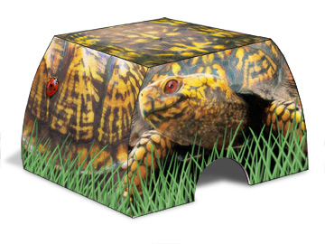 TurtleBoxRender