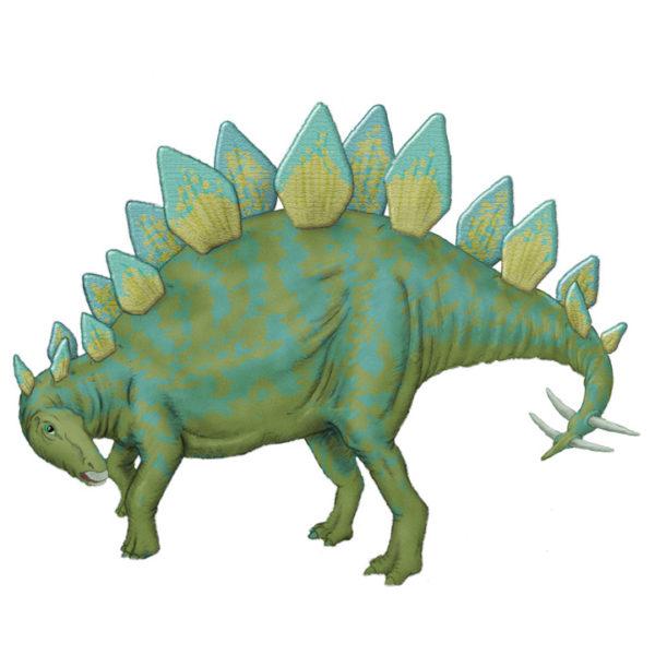 StegosaurusColor-REVISED